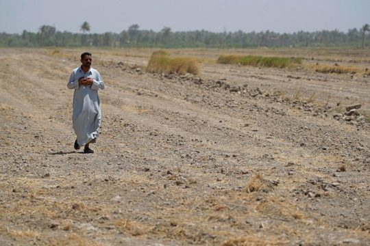 Iraq bans farming summer crops as water crisis grows dire
