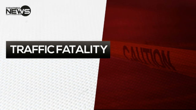 Traffic accident in GB claims life of pedestrian