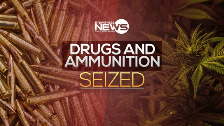 Police seize illegal drugs
