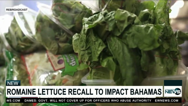 Ministry of Health: Dump romaine lettuce if not grown in your backyard
