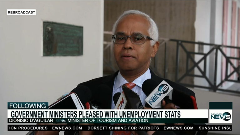 D'Aguilar: The FNM's strategy is to create private sector jobs