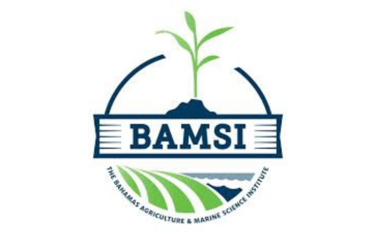 Four years after fire, BAMSI to get new dorms this Fall
