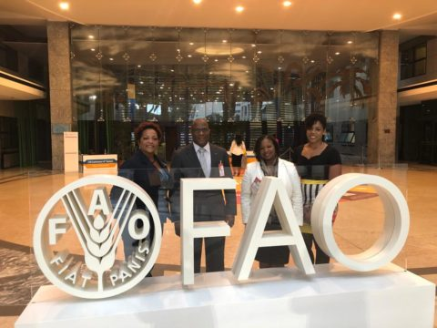 Bahamas nominated to sit on FAO Council