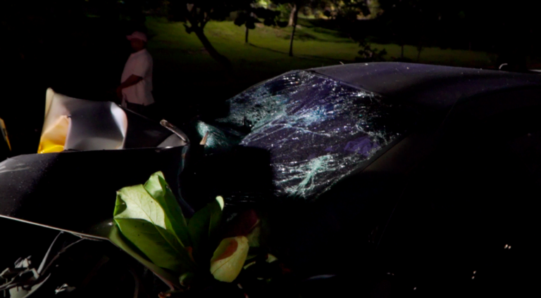 Man killed after car crashes into tree