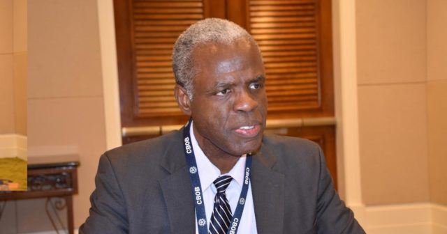 Private-sector foreign currency inflows fell over 30 percent in 2020, says CBOB governor