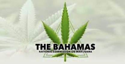 Marijuana commission reactivated until June 2021