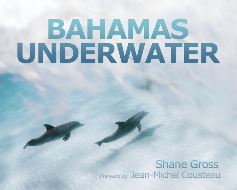 """BREEF launches photography book """"Bahamas Underwater"""" with award-winning photographer Shane Gross in partnership with Rolex"""