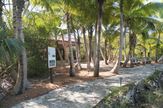 Leon Levy Native Plant Preserve celebrates 10 years on Eleuthera