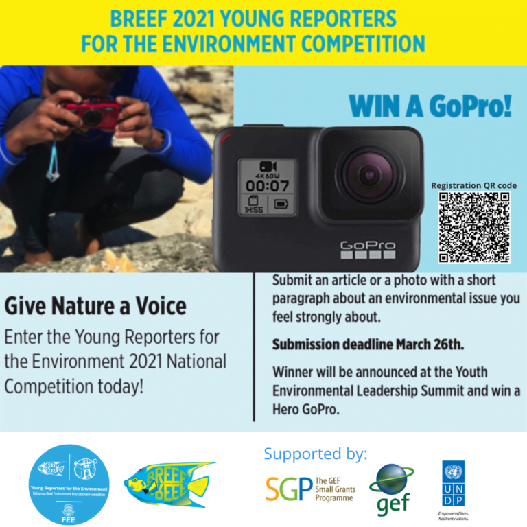 BREEF launches annual national competition for students