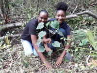 Sandals Foundation to plant 10K trees by June 2022 to strengthen Caribbean environmental conservation efforts