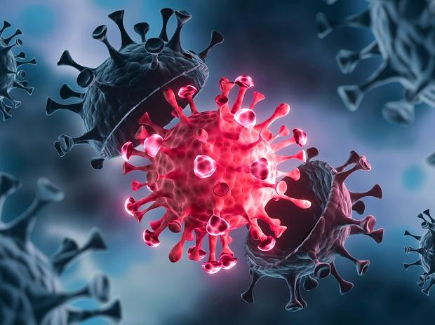 THEY'RE HERE: Alpha and iota coronavirus variants confirmed in The Bahamas