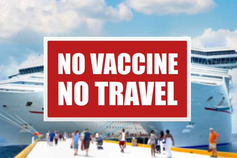 """""""WE HAVE TO BE MORE CAUTIOUS"""": Govt hopes to mitigate virus spread with new cruise regulations, says minister"""